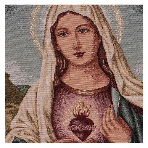 Arazzo Sacro Cuore di Maria con paesaggio cornice ganci 50x40 cm 2