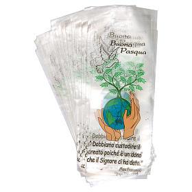 Hülle für den Palmsonntag Motiv Friede auf Erden 500 Stück s2