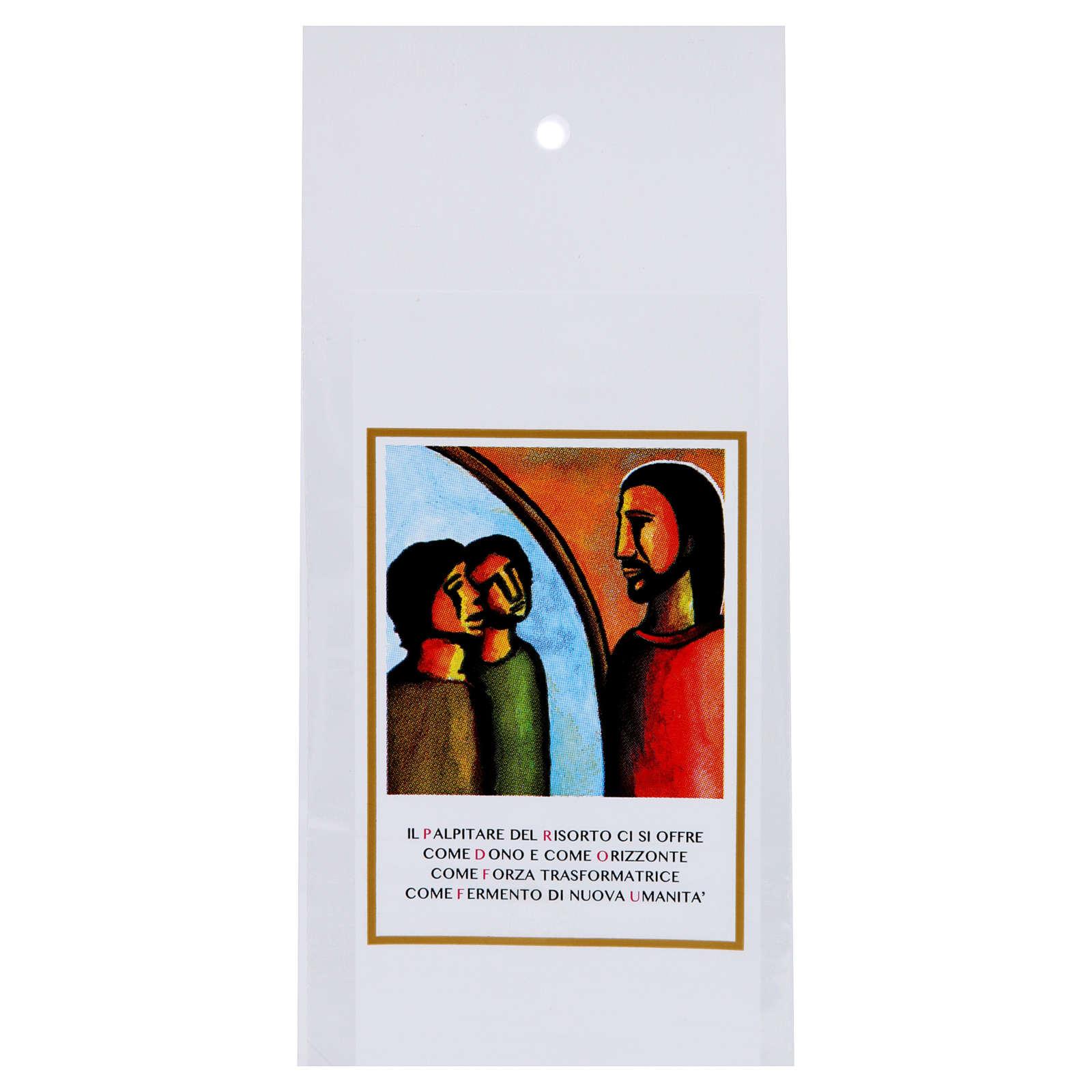 Sobre Domingo de Ramos para olivo Sínodo Jóvenes 200 piezas 3