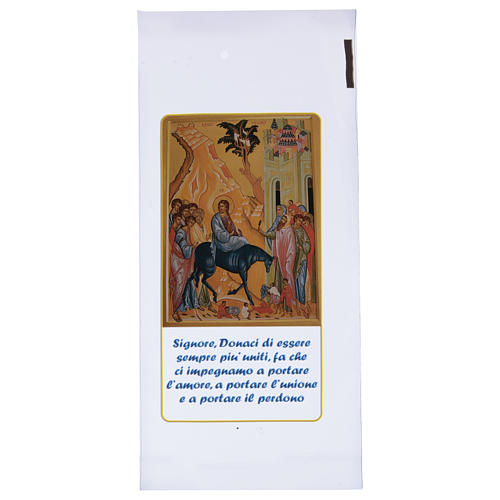 Palm Sunday palm strip bag with entrance to Jerusalem 200 pieces 1
