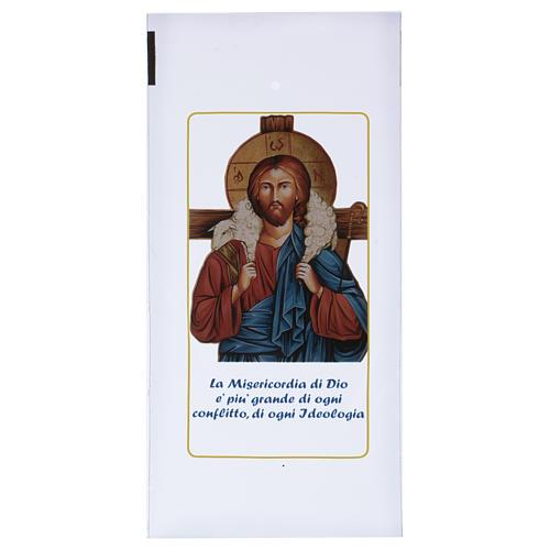Palm Sunday palm strip bag with Jesus the Good Shepherd 200 pieces 1