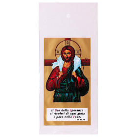 Bag for olive tree branch for Palm Sunday with Jesus the Good Shepherd 200 pieces s1