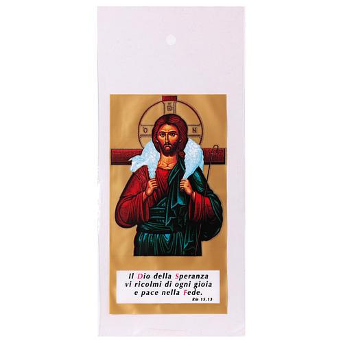 Busta porta olivo Domenica delle Palme Cristo Buon Pastore 200 pz 1