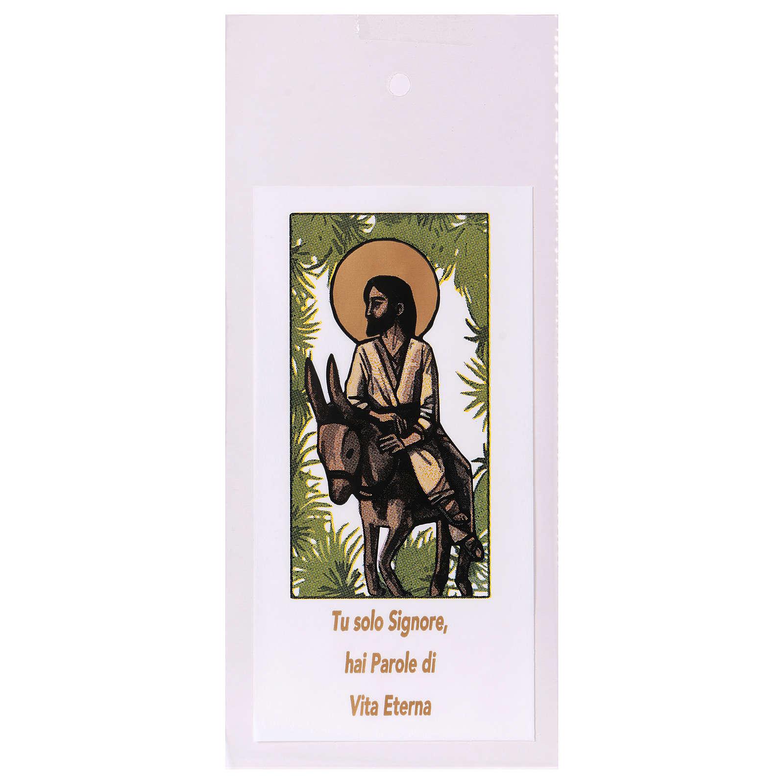 Sobre para olivo Domingo de Ramos Entrada en Jerusalén 200 piezas 3