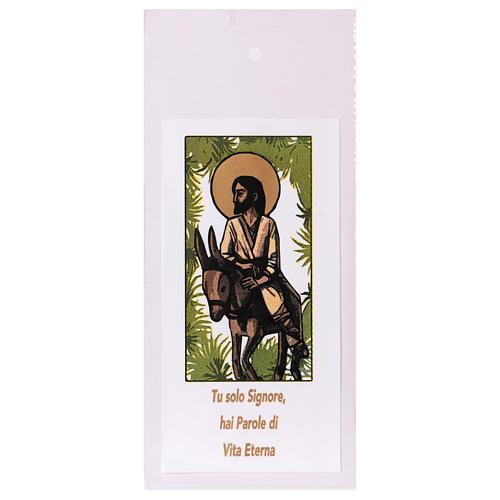 Busta porta olivo Domenica delle Palme Ingresso a Gerusalemme 200 pz 1