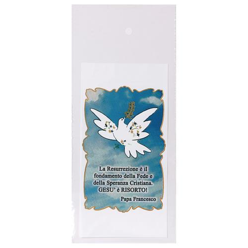 Busta porta olivo Domenica delle Palme Colomba della Pace 200 pz 1