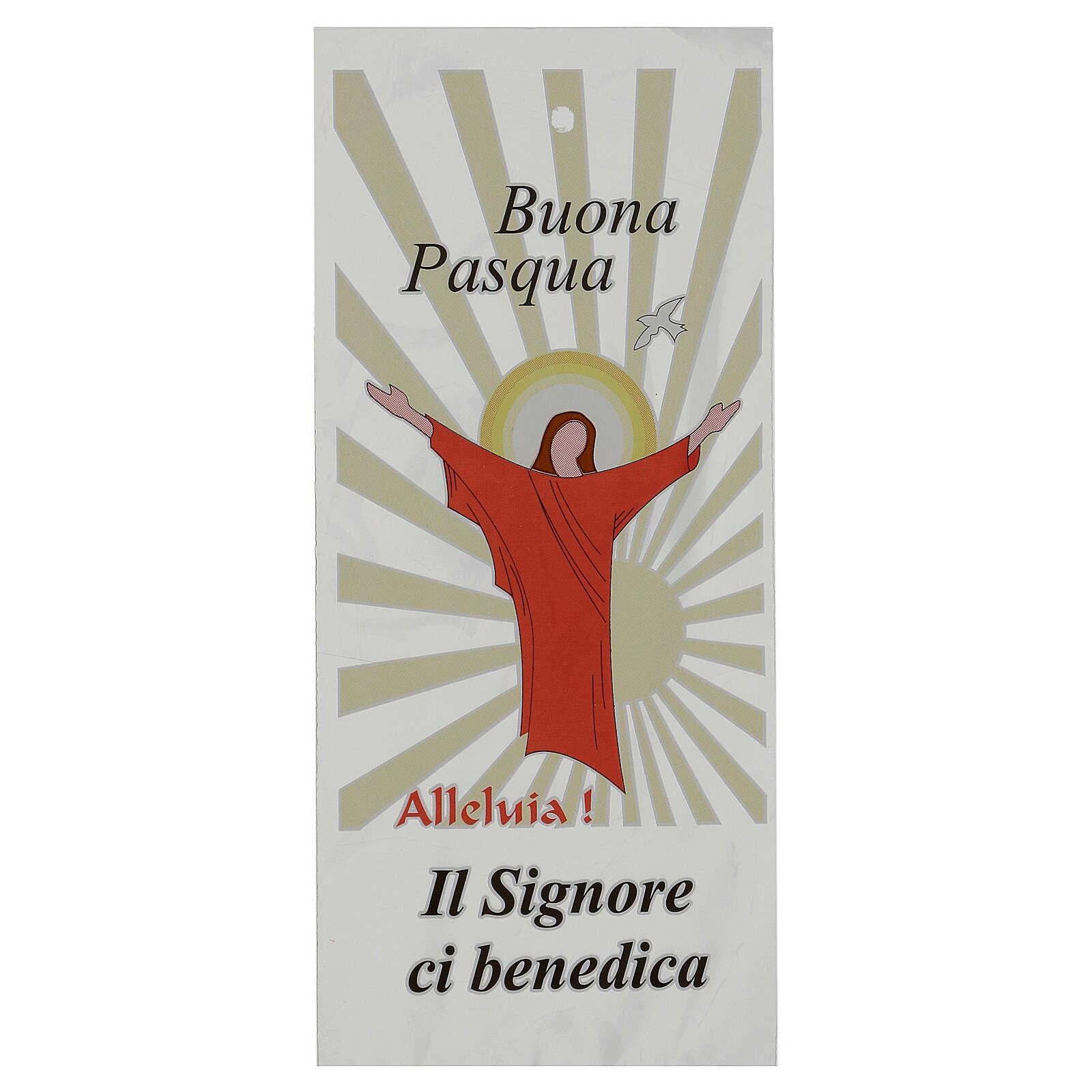 Sachet pour buis Dimanche des Rameaux Jésus Ressuscité (500 pcs) 3