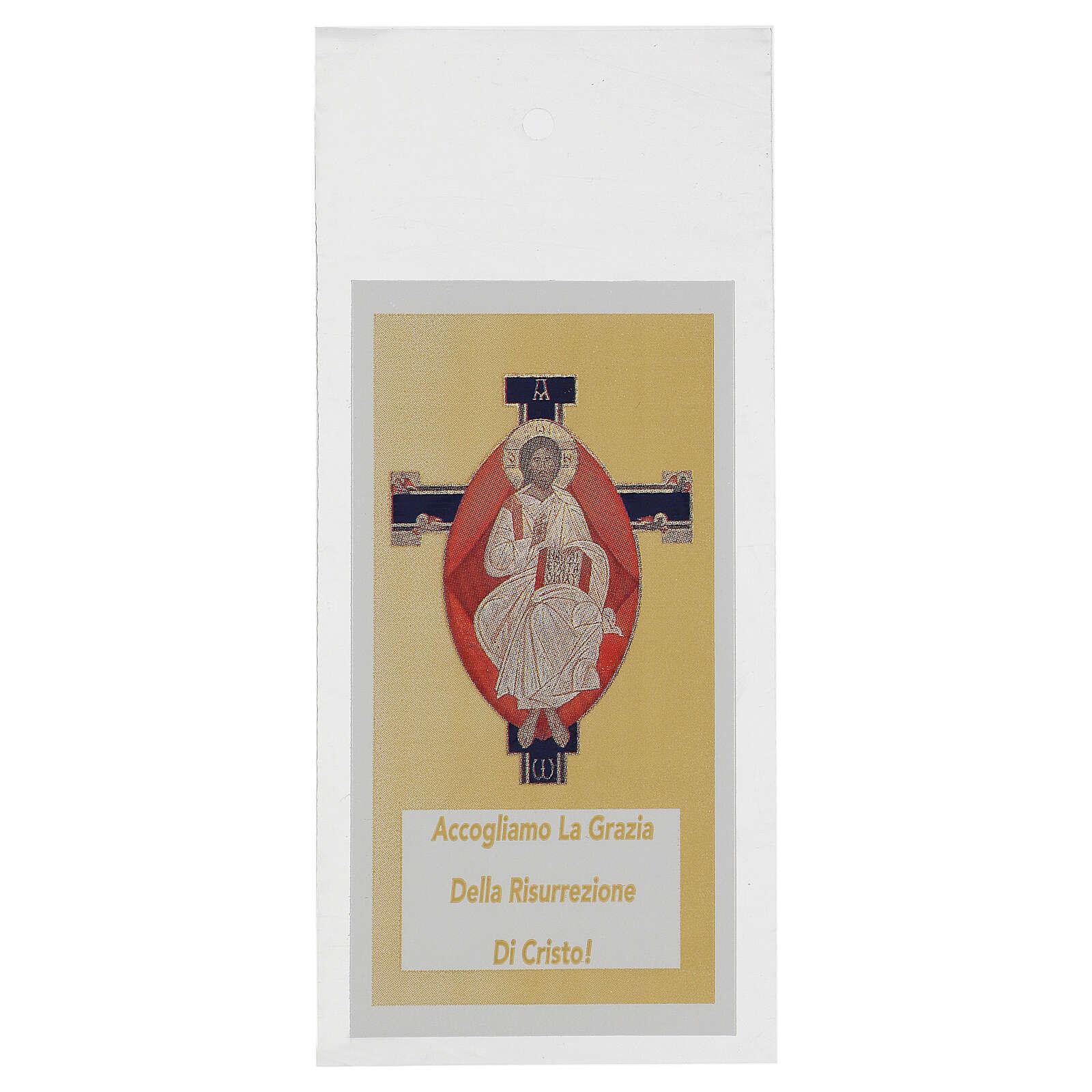 Sobre para olivo Domingo Ramos Jesús Pantocrátor (200 piezas) 3