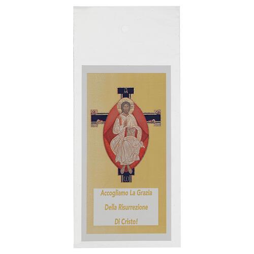 Sobre para olivo Domingo Ramos Jesús Pantocrátor (200 piezas) 1