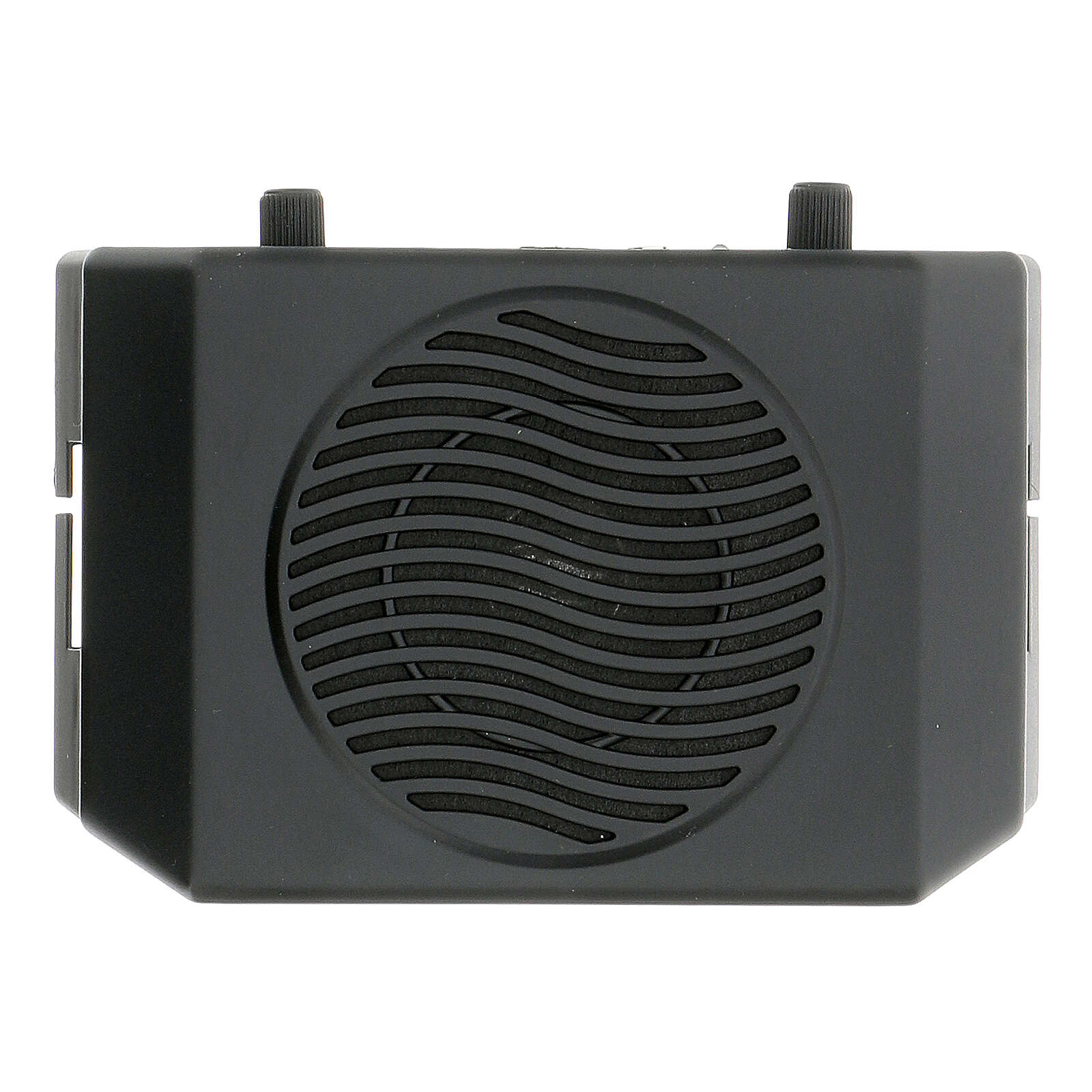 Portable amplifier for celebrations 3