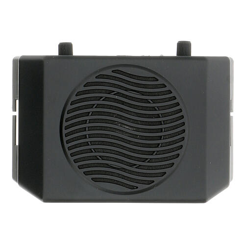 Portable amplifier for celebrations 2