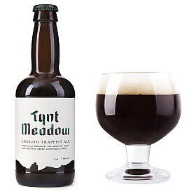 Tynt Meadow Dark English Trappist Beer 33 cl s2