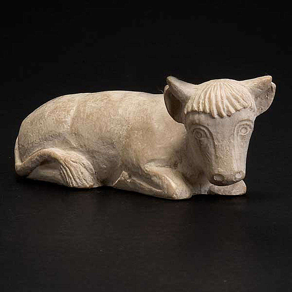 Ox, autumn crib 4