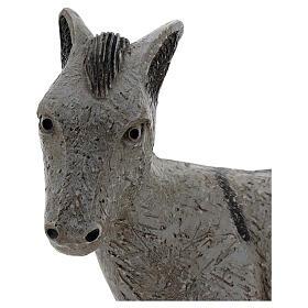Donkey rural crèche bethleem monastery s2