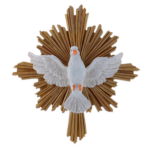 Dove painting in resin 20,3X18,3 cm 1