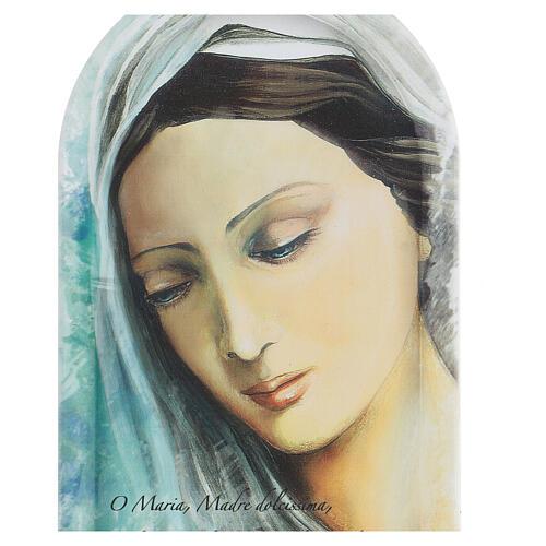 Icono rostro Virgen con oración 25 cm 2