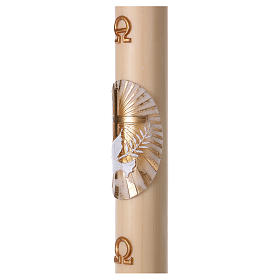 Beeswax Paschal Candle with Cross, Dove, Alpha and Omega 8x120 cm s3
