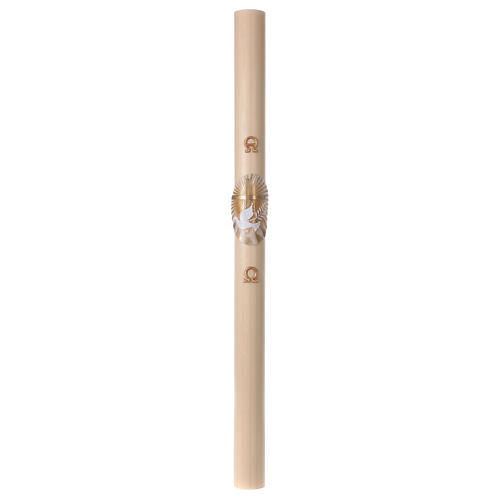 Beeswax Paschal Candle with Cross, Dove, Alpha and Omega 8x120 cm 4