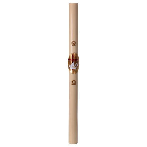 Cero pasquale cera d'api Croce e Colomba Rosso 8x120 cm 4