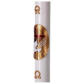 Cierge pascal blanc Croix et Colombe rouge 8x120 cm s3