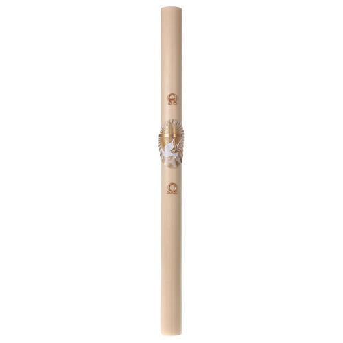 Cierge pascal cire d'abeille Croix et Colombe 8x120 cm AVEC RENFORT 4