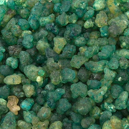 Pine fragrance Greek incense 1