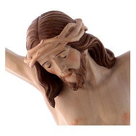 Corpo Cristo Siena brunito 3 colori s2