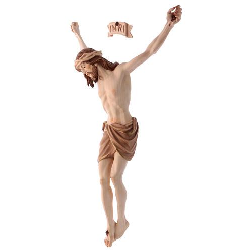 Corpo Cristo Siena brunito 3 colori 3