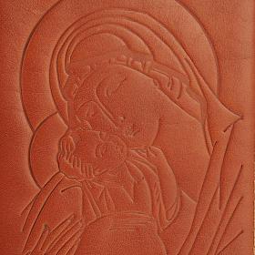 Copertina 4 vol. immagine, alfa omega s3