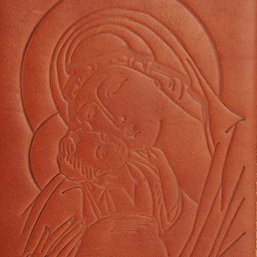 Copertina 4 vol. immagine, alfa omega 3