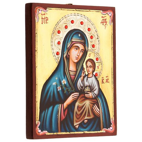 Icone Vierge Hodigitria 3