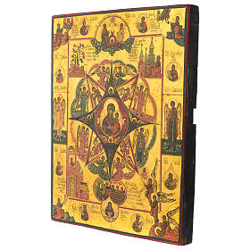 Our Lady of the burning bush ancient Russian icon end XX century 12x10 inc s3