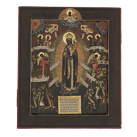 Mother of God Joy of all who suffer ancient Russian icon, XIX century, 32x26 cm s1