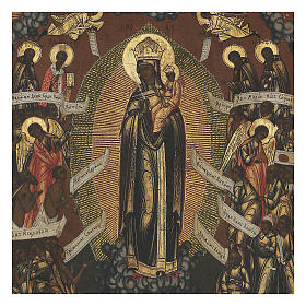 Mother of God Joy of all who suffer ancient Russian icon, XIX century, 32x26 cm s2