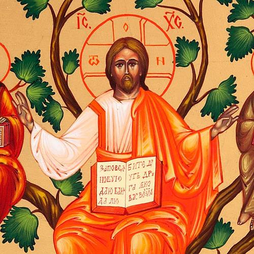 Icona russa Gesù Vera Vite 22x27  dipinta a mano 3