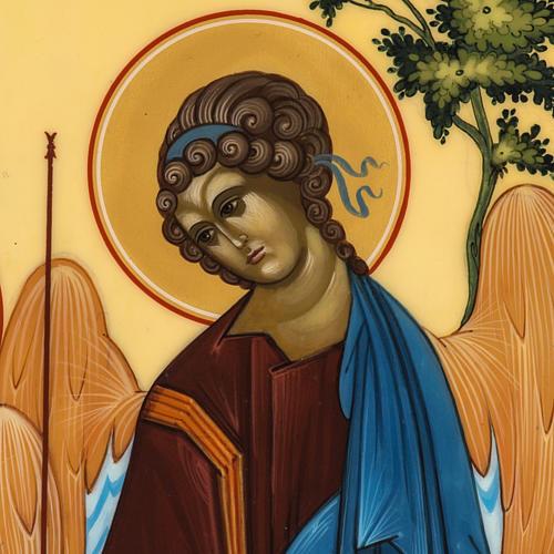 Icona Russia Santissima Trinità di Rublev 31x26 2
