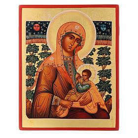 Icona russa Madonna Allattante 21X17 cm s1