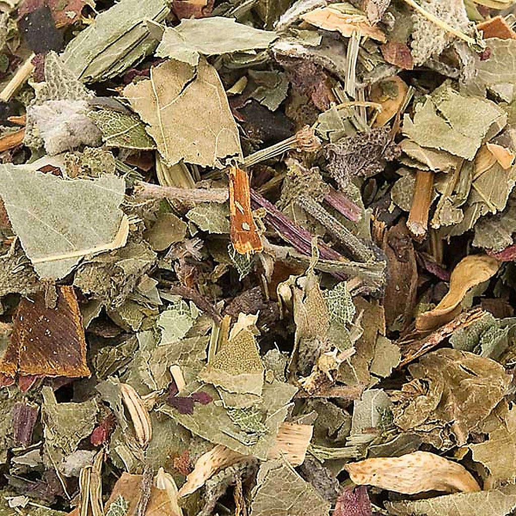 Camaldoli Sea oak herbal tea 3