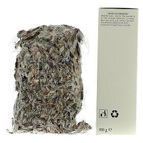 Camaldoli Sea oak herbal tea s3