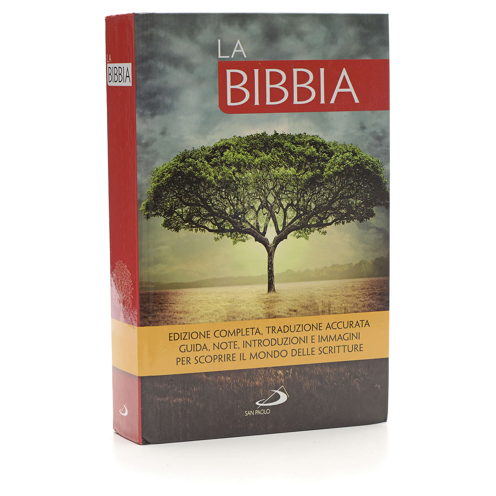 La Bibbia San Paolo 4