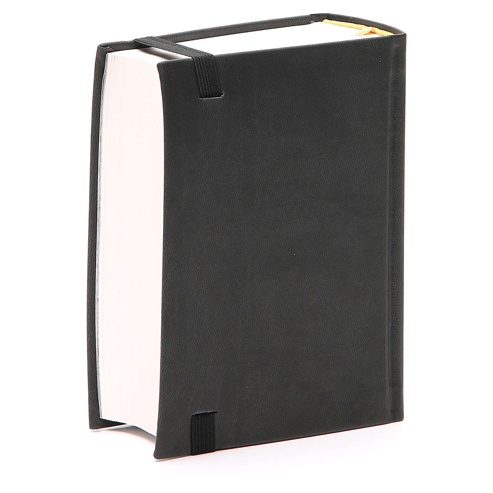 Bibbia Gerusalemme ed. Pellegrino 4