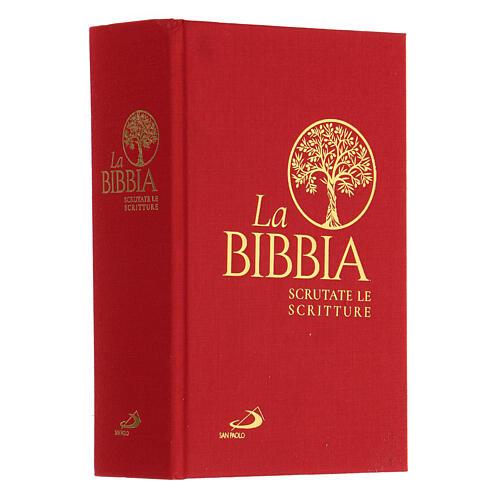La Bibbia, Scrutate le Scritture San Paolo 2020 2