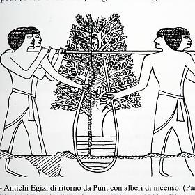 L'encens , entre mythe et réalité ITALIEN s4