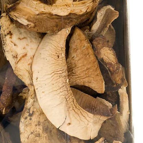 Italian dried Porcini mushrooms, Camaldoli 2