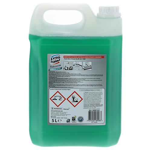 Cleansing tank Pro Formula Lysoform Alpine freshness, 5 liters 3