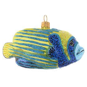 Blown glass Christmas ornament, emperor angelfish s3