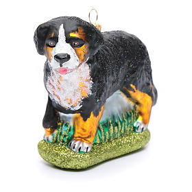 Blown glass Christmas ornament, Bernese Mountain dog s4