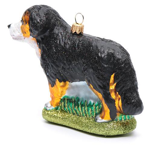 Blown glass Christmas ornament, Bernese Mountain dog 2