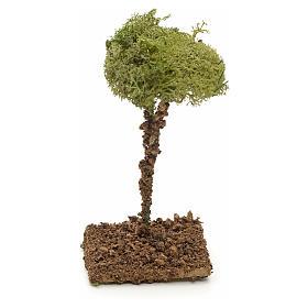 Arbre de lichens pour crèche 12 cm s2
