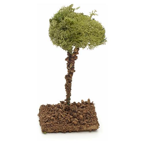 Arbre de lichens pour crèche 12 cm 2